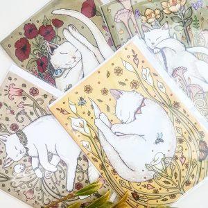 Cat Card Sets